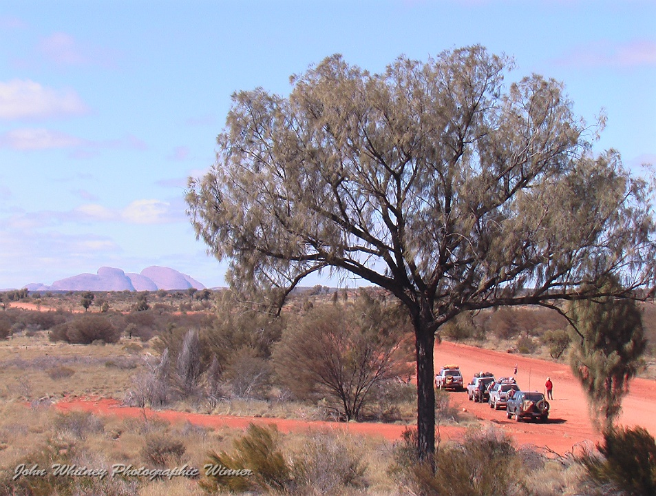 2011 Convoy at Kata Juta Photo by Liz Mills